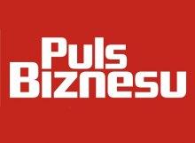 Puls Biznesu logo