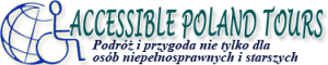 logo_accessible4_PL